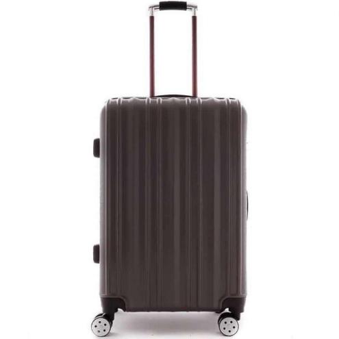 Streak travel luggage 24inch